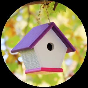 Uniquely Colored Wren Houses
