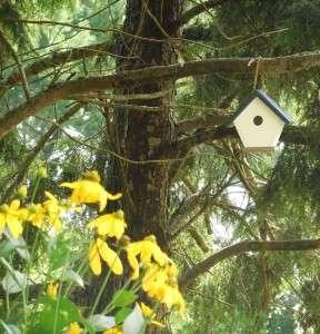 Navy and white wren house haning in garden setting
