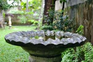 Bird bath in a garden setting