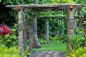 garden canopy - man-made structures