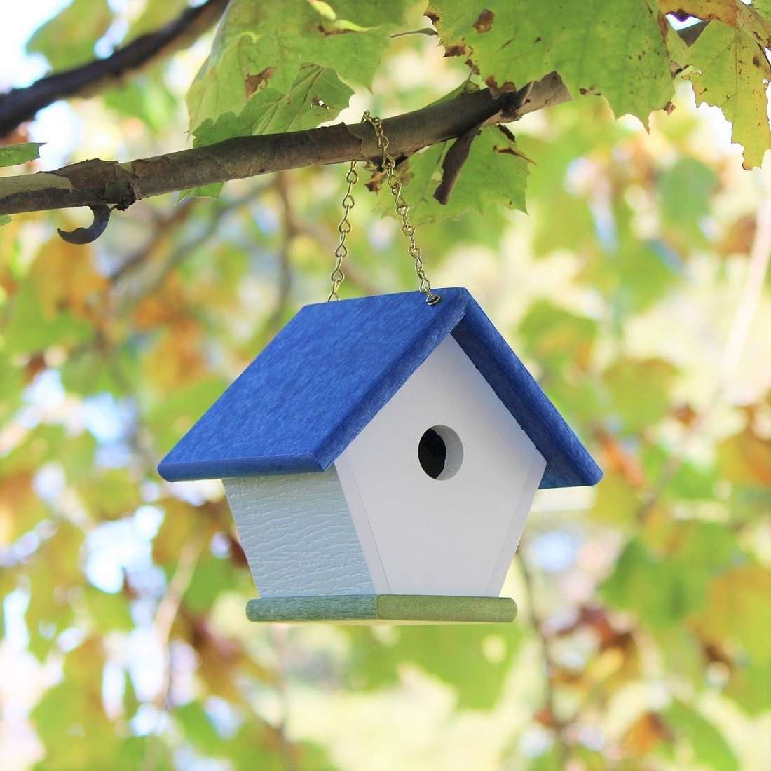 wren bird house hanging in a tree in the fall weather