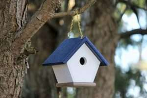 navy wren house hanging in a tree