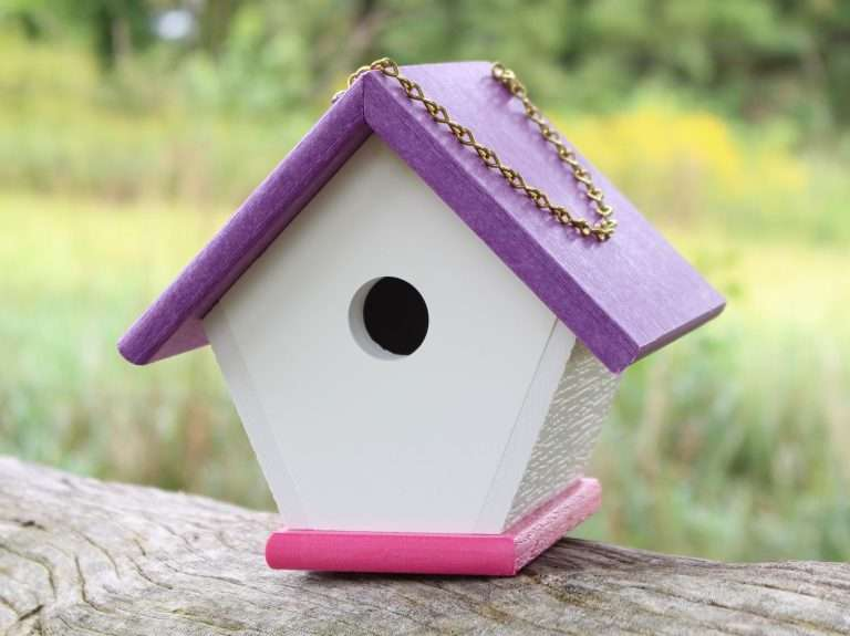 Wren house with purple roof and pink base